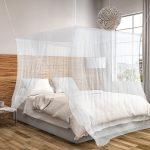 Wat te doen tegen muggen in je huis?
