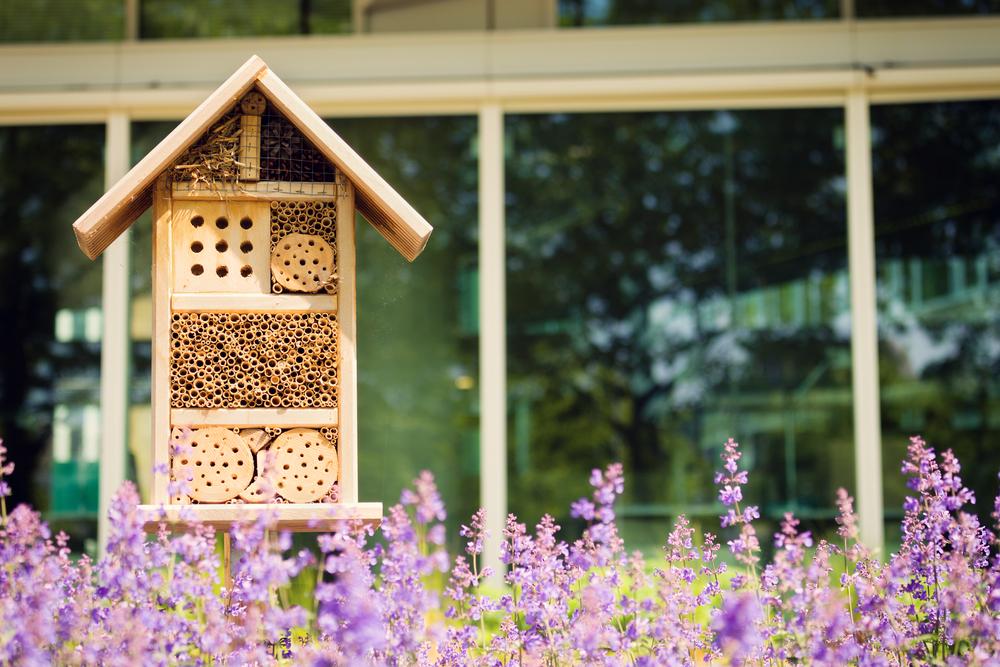 bijen, bijenhotel